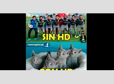 Alianza Lima vs Sporting Cristal Duelo de memes Foto 1