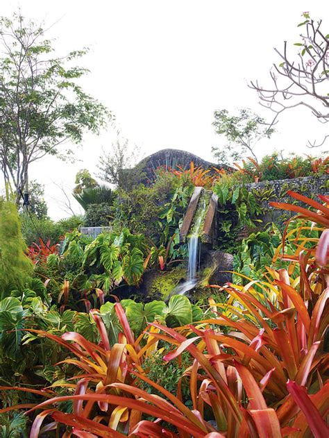 helen marden paintings helen and brice marden s inn in nevis in the caribbean with gardens designed by raymond