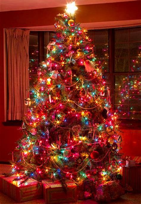 78 ideas about colorful tree on