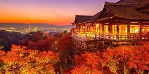 Erable Du Japon Entretien : l rable du japon plantation et entretien ma petite ~ Nature-et-papiers.com Idées de Décoration