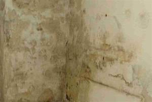 Feuchtigkeit In Der Wand Was Tun : dichtemauer t v zertifizierte bauabdichtung ~ Sanjose-hotels-ca.com Haus und Dekorationen