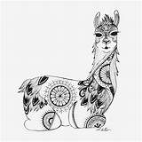 Llama Coloring Mandala Zentangle Adult Colouring Colour Sitting Designed Drawing Alpaca Printable Sheets Unicorn Illustrations Completely Drawn Afkomstig sketch template