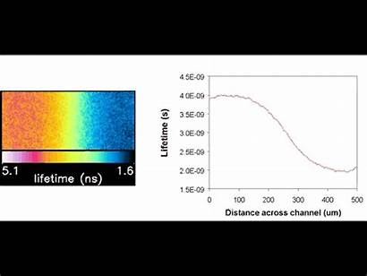 Imaging Microfluidic Fluorescent Channel Magnetic Devices Ion