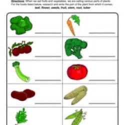Plants Worksheets Plant Parts We Eat Worksheet