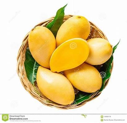 Yellow Mango Skin Basket Amarillo Fondo Cesta