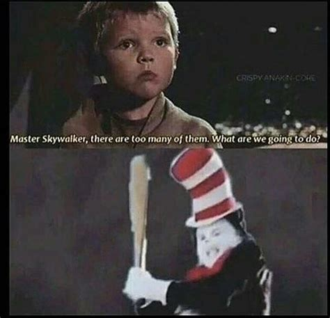Cat In The Hat Meme - execute order 66 cat in the hat know your meme
