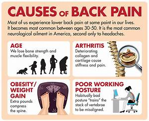 U00bb How The Spine Causes Pain To Your Internal Organs