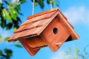 Coffee Can DIY Birdhouse Backyard Projects - Birds and