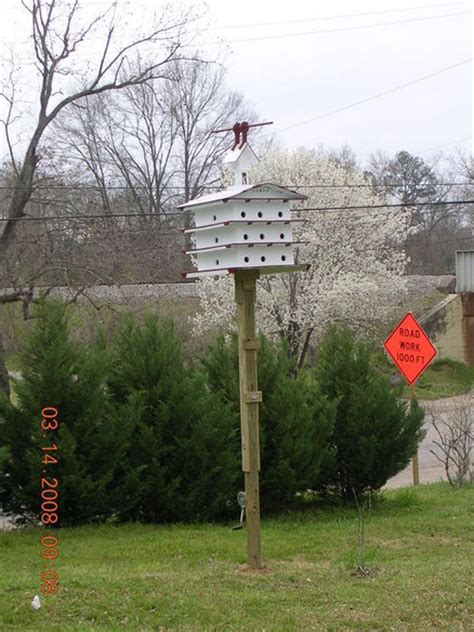 purple martin house  pole  hoist  roz