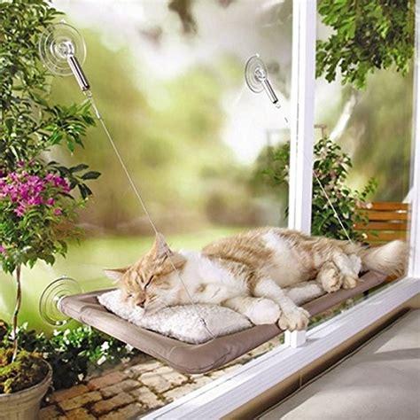amaca gatti la amaca per gatti si attacca alla finestra