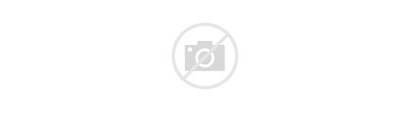 Resolutions Bylaws Voting