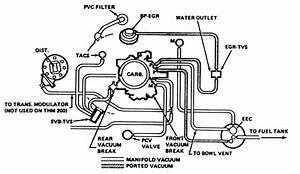 Quadrajet Vacuum Line