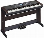 Best Beginner Keyboards and Digital Pianos | The HUB
