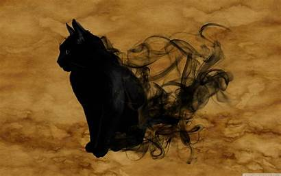 Halloween Desktop Kucing Mac Cat Wallpapers Dunia