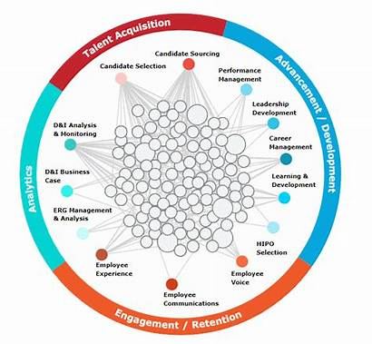 Diversity Inclusion Technology Mercer Market Map Research