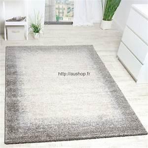 Tapis Salon Moderne : tapis salon vente en ligne grand choix de tapis pas cher et design ~ Teatrodelosmanantiales.com Idées de Décoration