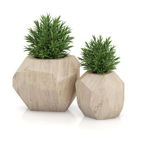 contemporary pot plants two plants in modern wooden pots plant pots pinterest plants and modern