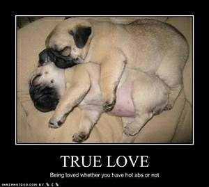 Puppy Love! So Good!   boldcorsicanflame's Blog