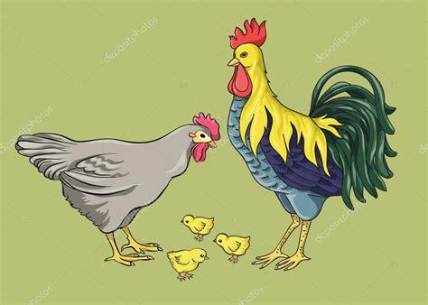 Vector: gallina y pollitos Gallo gallina y pollos
