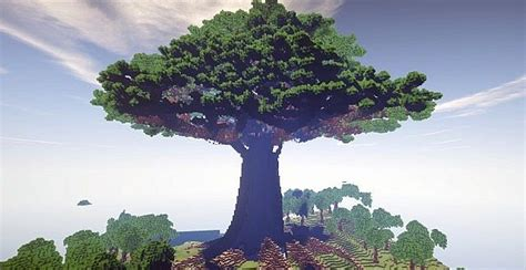 mother  trees largest    town minecraft building