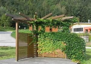 Pergola Elemente Holz : pergola perfekter sichtschutz f r den garten pergola aus holz ~ Sanjose-hotels-ca.com Haus und Dekorationen
