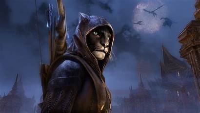 Elder Scrolls 4k Elsweyr Wallpapers Games Pc
