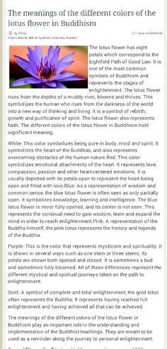 lotus flower color meanings lotus flower color meanings lotus capiz shell candle