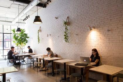 Coffee shop in amsterdam westerstraat. 10 Best Coffee Shops in Toronto - Condé Nast Traveler