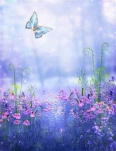 Popular Pink Butterfly Background-Buy Cheap Pink Butterfly ...