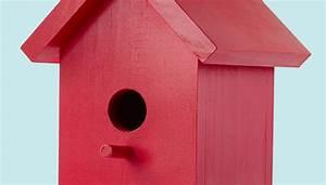 Easy One-Board Bird House Plans