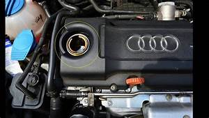 Audi A3 8p Tfsi 1 4  U00d6lwechsel   U00d6lservice R U00fcckstellen