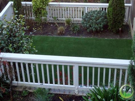 Backyard Runs by Best 25 Backyard Area Ideas On