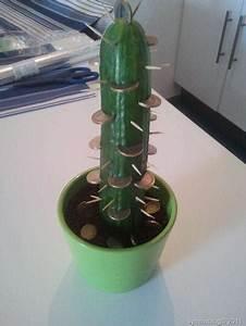 Wie Oft Muss Man Einen Kaktus Gießen : heute hab ich einen geldkaktus gepflanzt ~ Orissabook.com Haus und Dekorationen