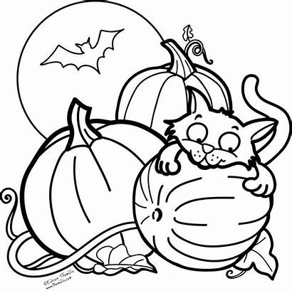 Pumpkin Coloring Patch Halloween Clipartmag