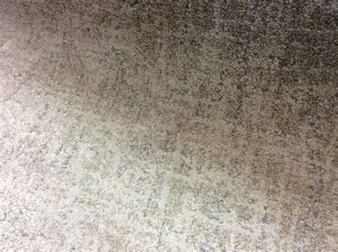 The Dixie Group With Fabrica Fine Carpets & Masland Carpets At Surfaces How Do I Get Rid Of Cat Urine From Carpet Professional Cleaning South London Why Is My Older Dog Scratching The Grab One Waikato To Dried Sick Stains Out Can Use Tiles On Stairs Clean Black Grease Spilled Water Car Now It Smells