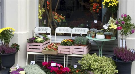 flower company florist inverness