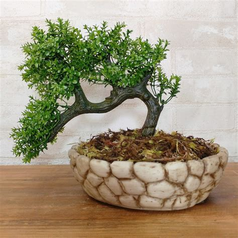 vaso da bonsai arranjo artificial de bonsai vaso em resina no elo7