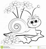 Coloring Snail Pages Printable Snails Daisies Daisy Unique Getcolorings Sheets sketch template