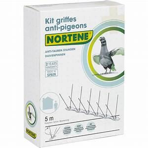Pic Anti Pigeon Leroy Merlin : pic anti pigeon leroy merlin ~ Melissatoandfro.com Idées de Décoration