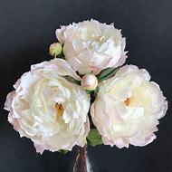 Large White Peonies Flower