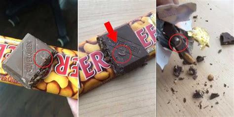 menjijikkan  ulat   cokelat silverqueen