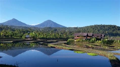 Sanak Retreat Bali 5 ($̶1̶5̶9̶)