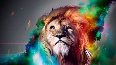 Cool Animals Animal Backgrounds Wallpapers Lion Ipad