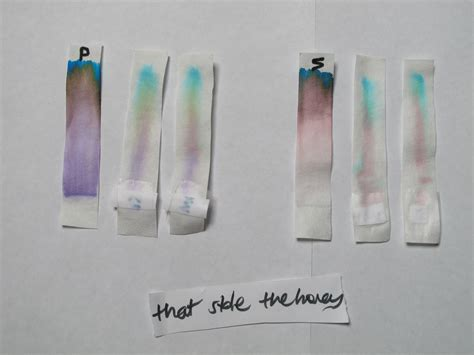 chromatography  ink pens black  ink   note
