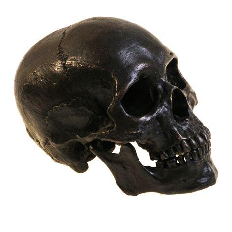dark skull bronze skeleton fine art sculpture