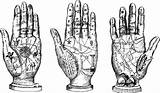 Palm Reading Clipart Clip Hands Astrology Digital Fortune Palmistry Stamp Coloring Line Telling Teller Clipground Charts Printable sketch template