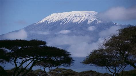 travel agency kilimanjaro