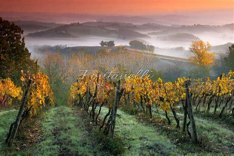 Fotografia Paesaggi Toscana - Foto Fontanelli