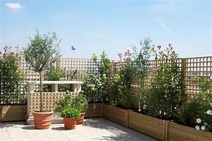Plantes Grimpantes Pot Pour Terrasse : une terrasse oui mais sans vis vis ~ Premium-room.com Idées de Décoration