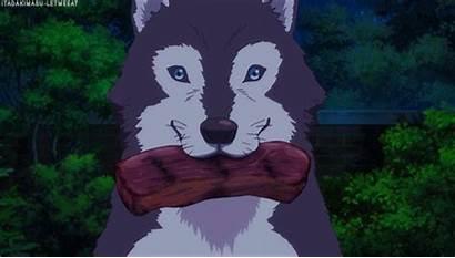 Husky Puppies Gifs Elegant Letmeeat Itadakimasu